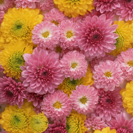 年回忌供養お花
